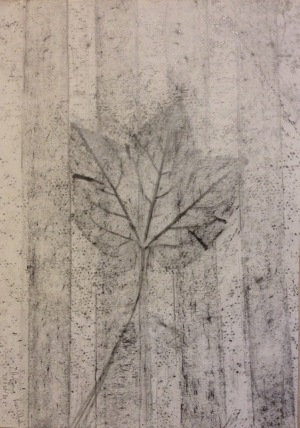 Autumn leaf (2016) graphite on paper